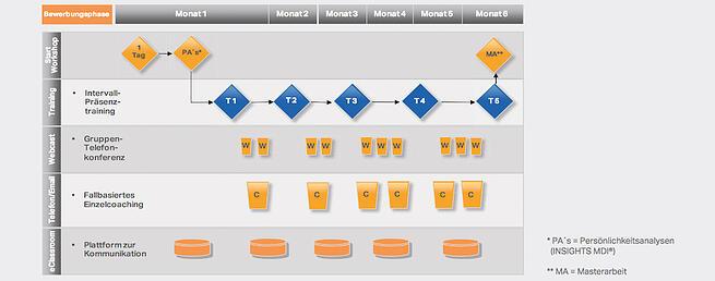 Entwicklungsprogramm zum IT-Lösungsverkäufer   evolutionplan®